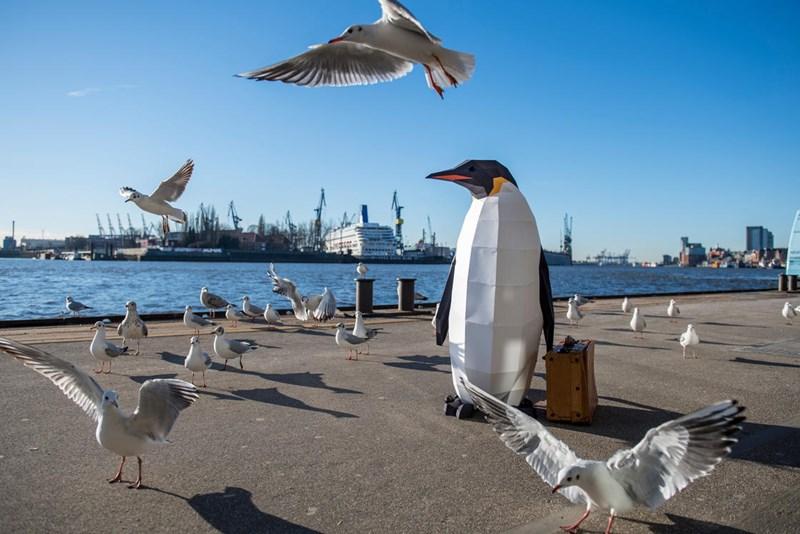 antarctica campaign pop up penguins - 4646917