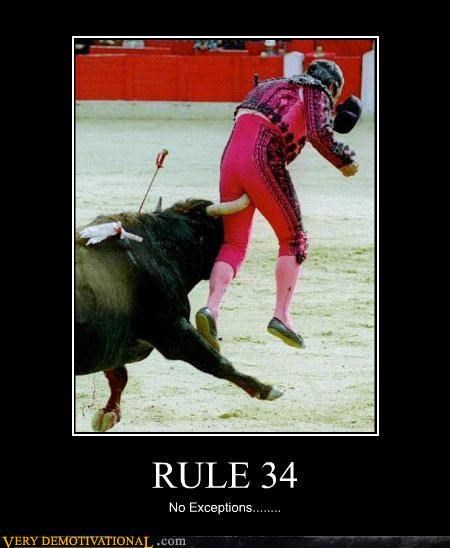 bull fight,butt,ouch,Rule 34