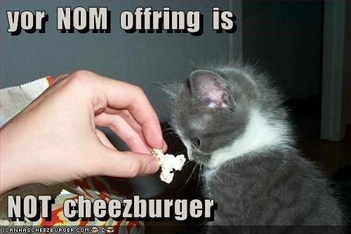 Cheezburger Image 4647700224