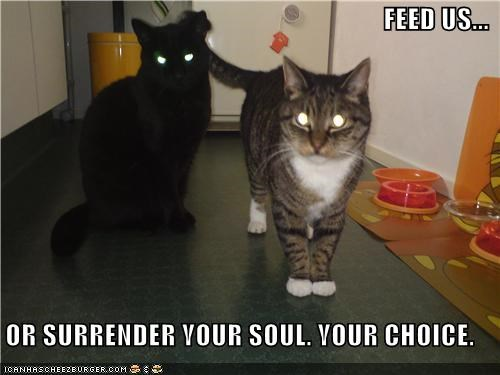 FEED US...  OR SURRENDER YOUR SOUL. YOUR CHOICE.