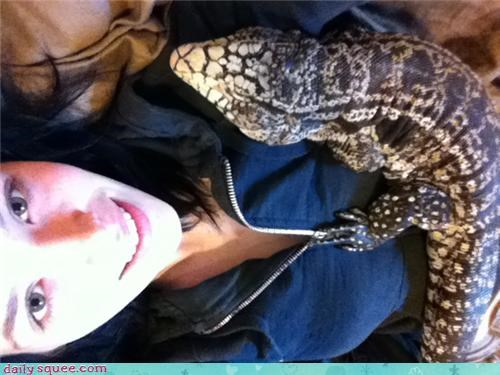 cuddling fyi gila monster lizard reader squees snuggles snuggling valid - 4648053248