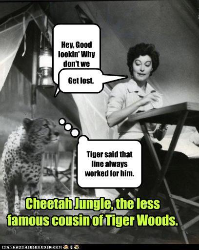 Cheezburger Image 4648473344
