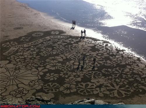 beach funny wedding photos proposal sand - 4648719872