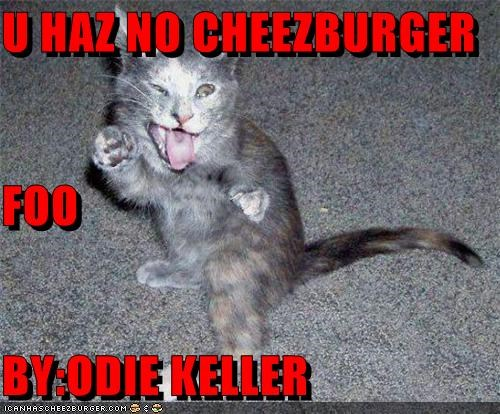 Cheezburger Image 4648851968