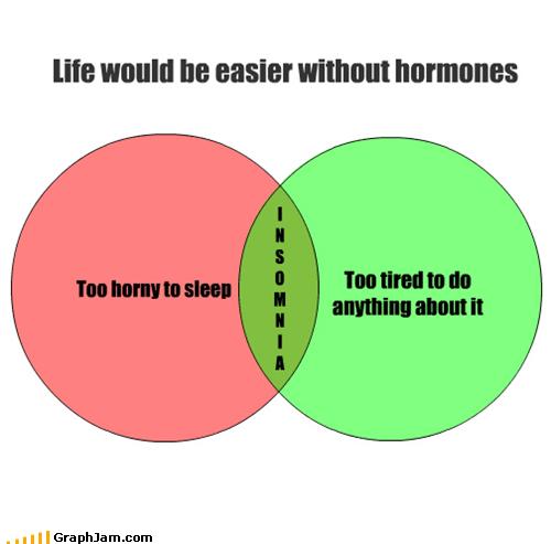 hormones horny insomnia life sleep venn diagram - 4649319168