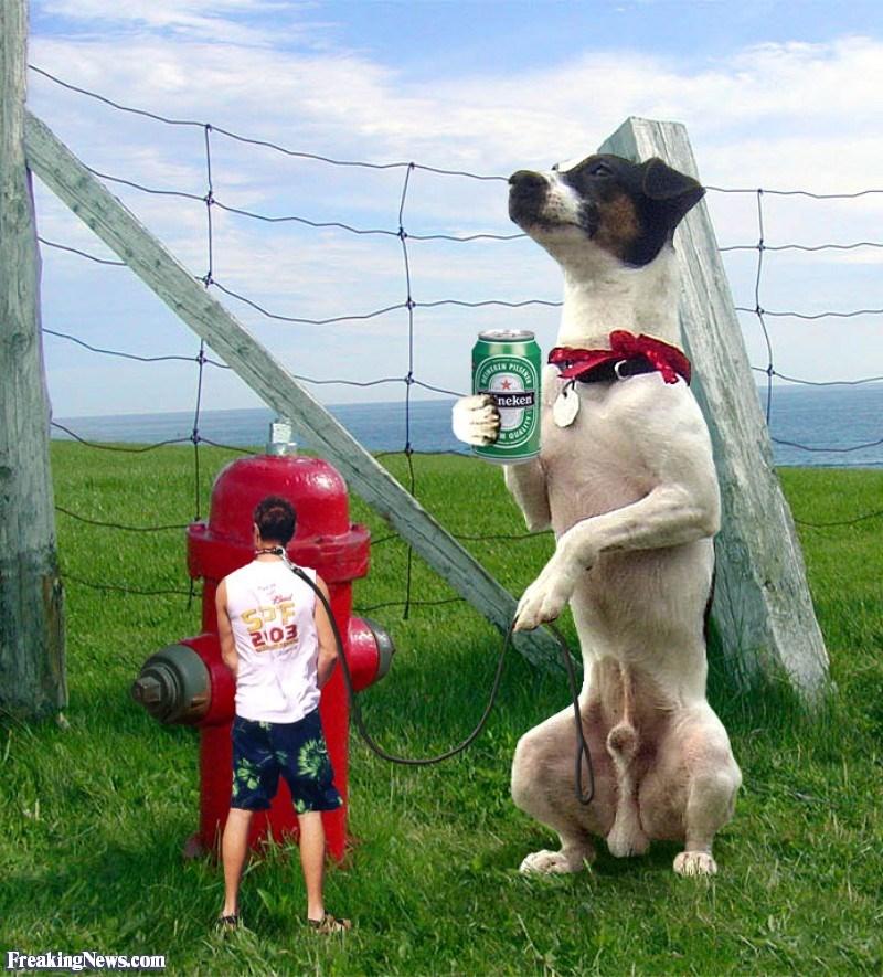pet owner photoshop battle