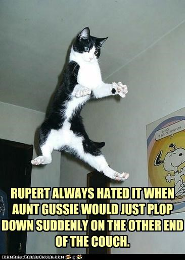airborne,aunt,caption,captioned,cat,couch,dislike,do not want,flung,flying,hate,hated,plop,surprise,thrown,upset,weight