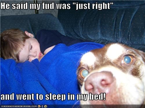 "He said my fud was ""just right"" and went to sleep in my bed!"