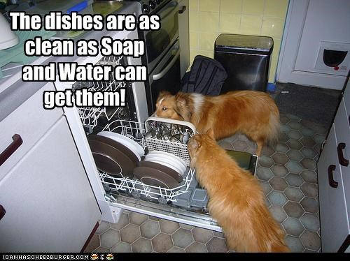 The dishes are as clean as Soap and Water can get them!