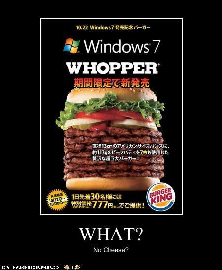 Cheezburger Image 4652160256