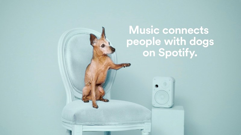 dogs Music adoption campaign spotify matching - 4652549