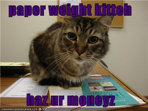 Cheezburger Image 4653297408