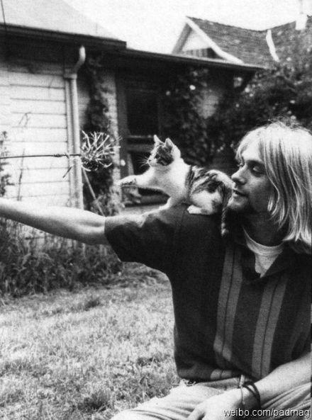 famous pet cats