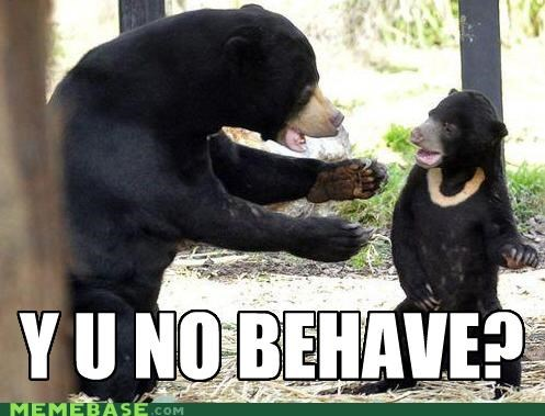 animals,animemes,bear,behave,behavior,Memes,unbearable