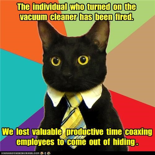 Business Cat cat fired vaccuum vroom - 4654819584