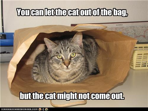bag,but,can,caption,captioned,cat,caveat,let,out,syllogism,you