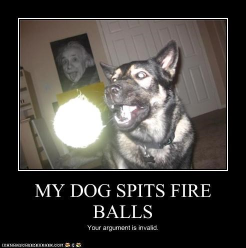 MY DOG SPITS FIRE BALLS Your argument is invalid.