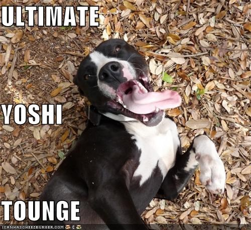 mario pit bull pitbull tongue ultimate yoshi