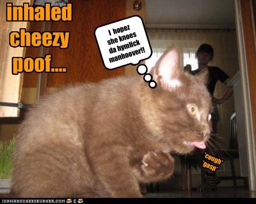 Cheezburger Image 4655852800