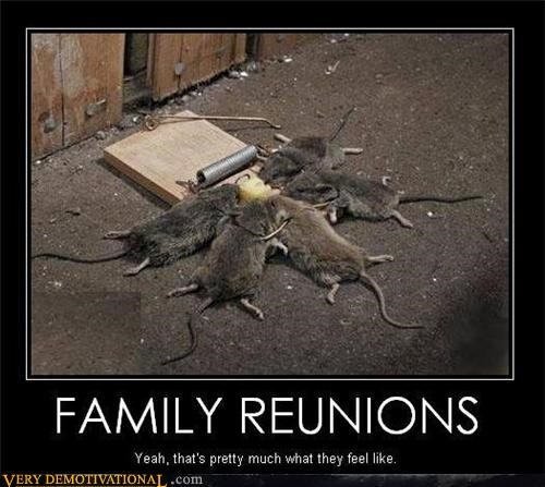 family reunion,mouse,sad face,wtf