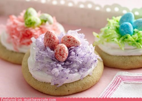 candy coconut cookies eggs epicute frosting nest