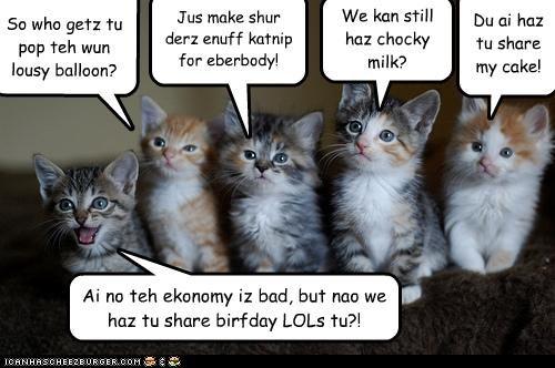 Ai no teh ekonomy iz bad, but nao we haz tu share birfday LOLs tu?! So who getz tu pop teh wun lousy balloon? Du ai haz tu share my cake! Jus make shur derz enuff katnip for eberbody! We kan still haz chocky milk?