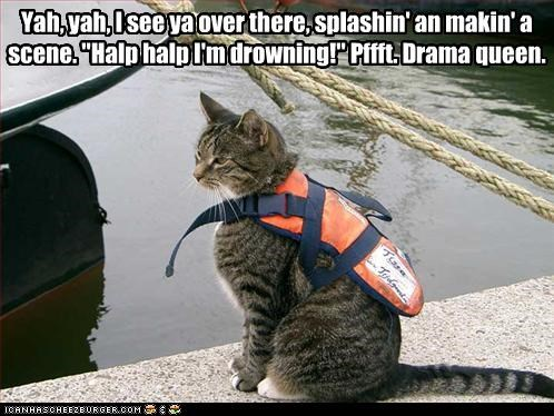 caption captioned cat disapprove Drama Queen drowning halp help lifejacket making over scene screaming see splashing there