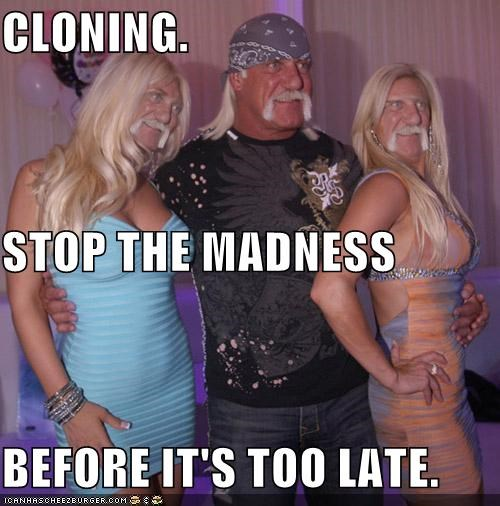 celeb,fake,funny,Hulk Hogan,shoop