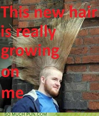 double meaning,Growing,hair,haircare,literalism,mohawk,product,punk,rancid,rogaine