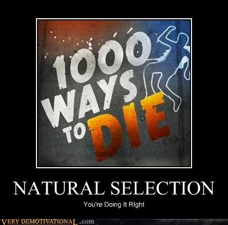 correct die natural selection - 4657414656