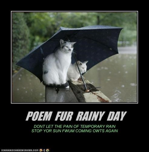 POEM FUR RAINY DAY DONT LET THE PAIN OF TEMPORARY RAIN STOP YOR SUN FWUM COMING OWTS AGAIN