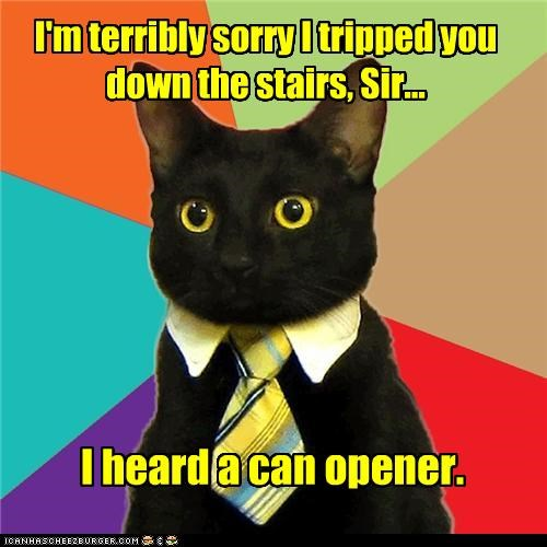 animemes,Business Cat,can opener,FRIDAY,lunch,stairs