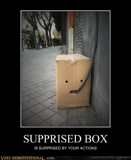 SUPPRISED BOX IS SURPRISED BY YOUR ACTIONS