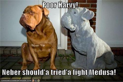 attempt bull mastiff bullmastiff condolences FAIL fight medusa regret Sad statue - 4658585600