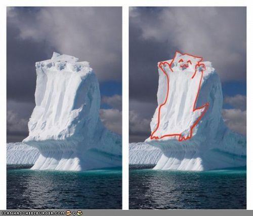 ceiling cat iceberg look alike snow - 4658931200