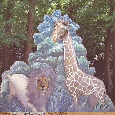 giraffes IRL lion zoo - 4659204096