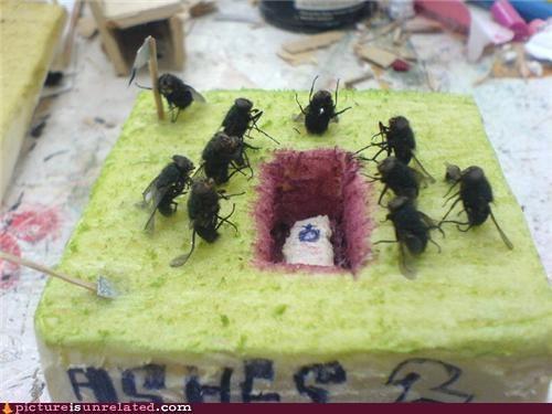 art,fly,funeral,sponge
