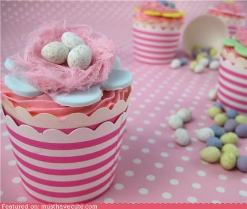 bird nest,candy,cupcakes,eggs,epicute,fairy floss,frosting,pink