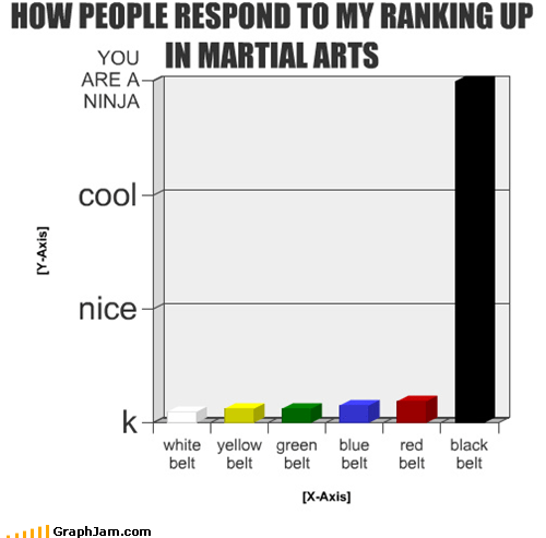 HOW PEOPLE RESPOND TO MY RANKING UP IN MARTIAL ARTS