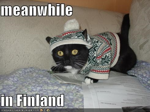 caption captioned cat dressed up Finland hat Meanwhile meme sweater - 4661579008