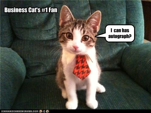 asking,autograph,Business Cat,caption,captioned,cat,fan,i can has,kitten,meme,number one,question,tie