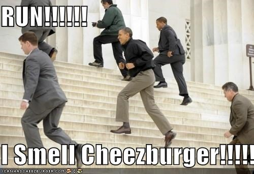 Cheezburger Image 4662854656