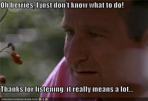 actor,celeb,funny,robin williams