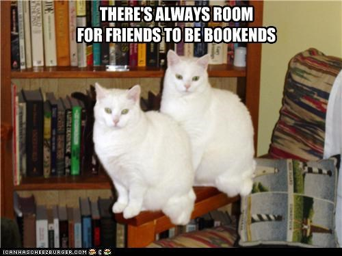 THERE'S ALWAYS ROOM FOR FRIENDS TO BE BOOKENDS