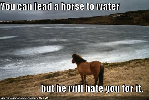 emolulz hate horse Sad water - 4664276480