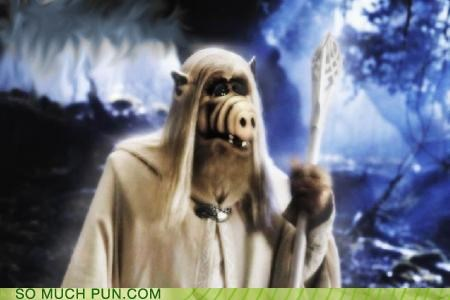 Alf gandalf gandalf the white juxtaposition literalism Lord of the Rings - 4664433152