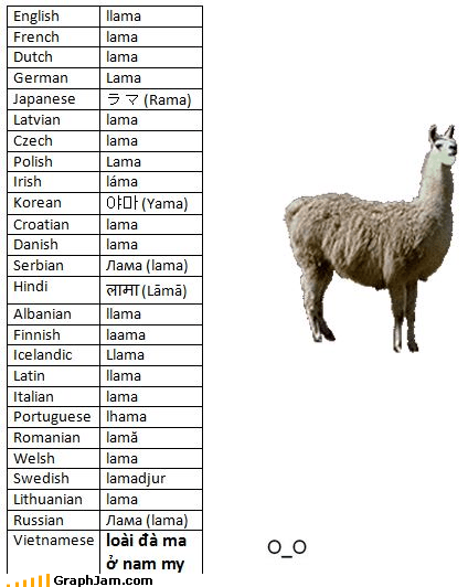 borrowed infographic language llama weird