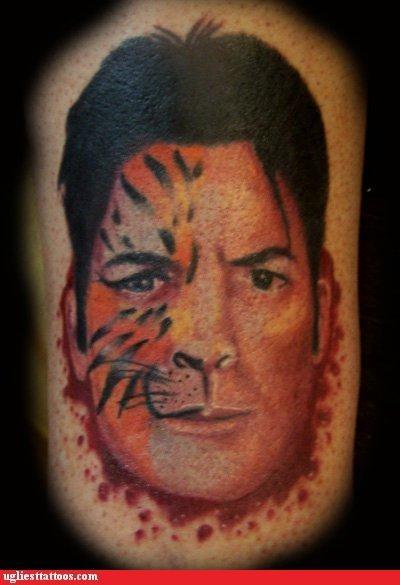 animals bloodnguts Carlos Irwin Estevez Cats celeb drugs Internet phenomena portraits - 4664560896