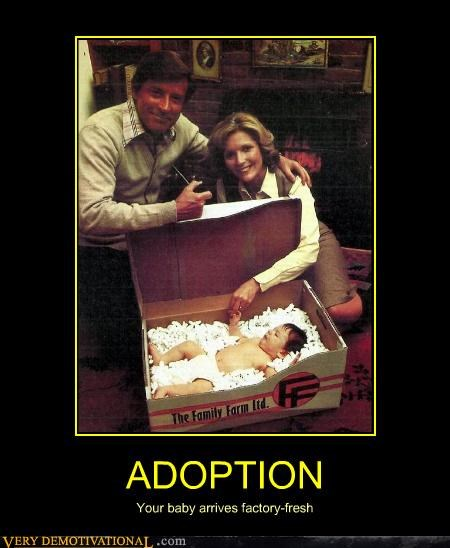 adoption baby factory