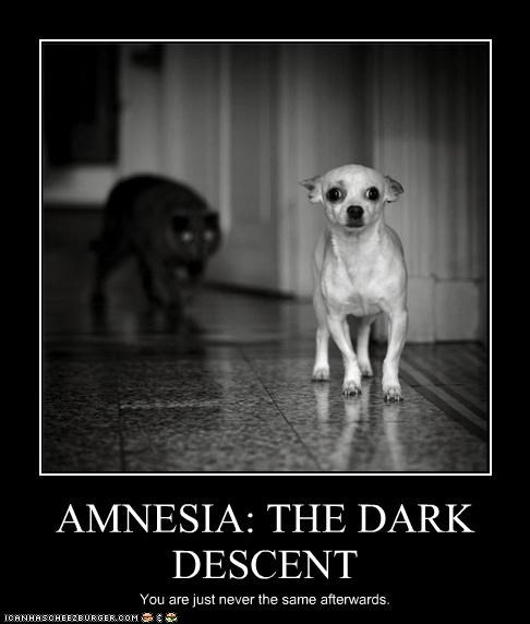 AMNESIA: THE DARK DESCENT You are just never the same afterwards.